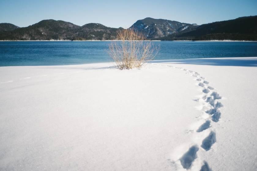 Walchensee Winter Spuren dm0078