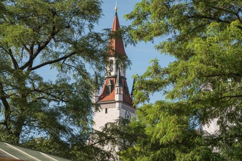Altes Rathaus durch Bäume am Viktualienmarkt DSF2704
