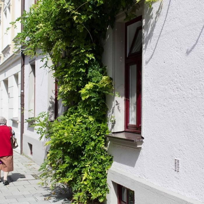 Strolling Along Haidhausen Sedanstrasse