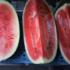 Summer, sun and watermelon!