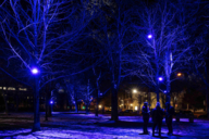 """The installation """"Licht