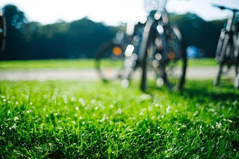 Bikes stand in the green grass in the English Garden in Munich