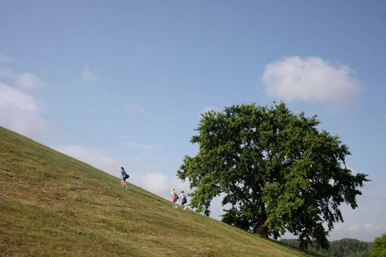 Three city hikers climb the Olympia mountain over steep green summer meadows.